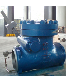 Extraction check valve
